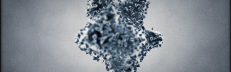 Image of virus